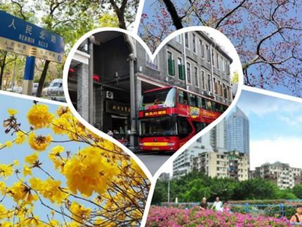 广州赏花地你知道几处?4条路线带你赏木棉紫荆黄风铃勒杜鹃